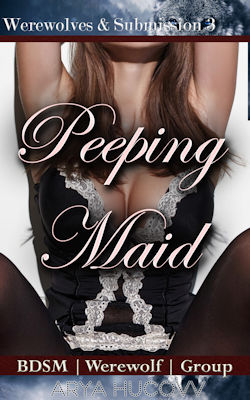 cover design for the book entitled Peeping Maid