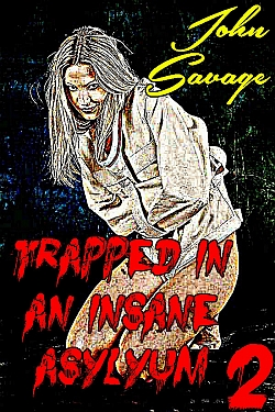 cover design for the book entitled Trapped in an Insane Asylum 2