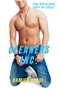 CLEANERS INC.
