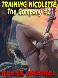 cover design for the book entitled Training Nicolette [the Company Book 1]