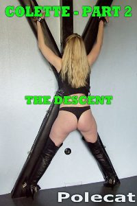 cover design for the book entitled Colette 2 The Descent