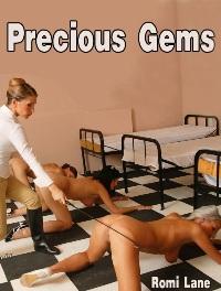 cover design for the book entitled Precious Gems