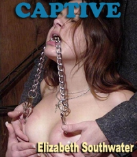 cover design for the book entitled Captive
