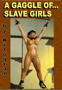 cover design for the book entitled A Gaggle Of Slave Girls