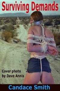 cover design for the book entitled Surviving Demands
