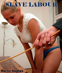 cover design for the book entitled Slave Labour