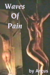 cover design for the book entitled Waves Of Pain