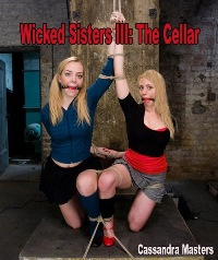 cover design for the book entitled Wicked Sisters 3 - The Cellar