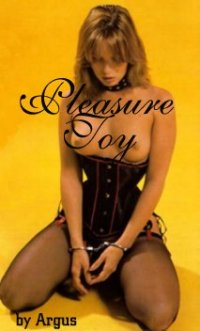 cover design for the book entitled Pleasure Toy