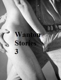 cover design for the book entitled Wanton Stories 3