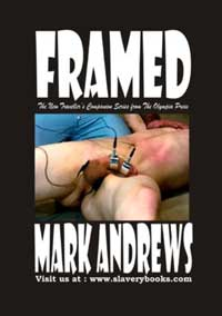 cover design for the book entitled Framed