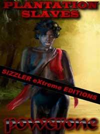 cover design for the book entitled Plantation Slaves