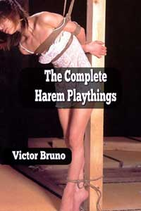 Complete Harem Playthings