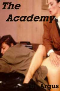 cover design for the book entitled The Academy