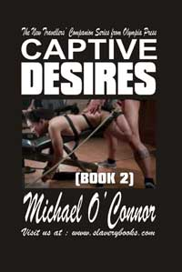 cover design for the book entitled Captive Desires Book Two