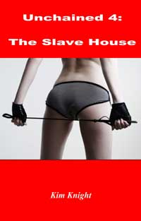 cover design for the book entitled The Slave House