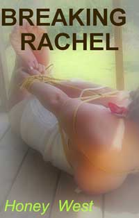 cover design for the book entitled Breaking Rachel