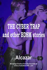 cover design for the book entitled The Cyber Trap And Other Bdsm Stories