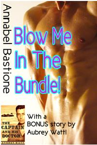 cover design for the book entitled Blow Me In The Bundle