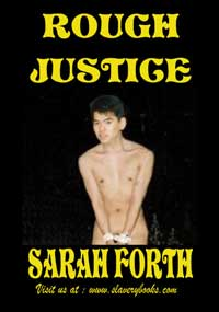 cover design for the book entitled Rough Justice