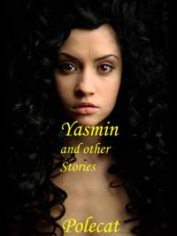 cover design for the book entitled Yasmin And Other Stories