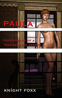 Paula - Punishment Of A Transsexual Escort