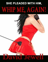 cover design for the book entitled Whip Me Again