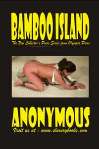 cover design for the book entitled Bamboo Island