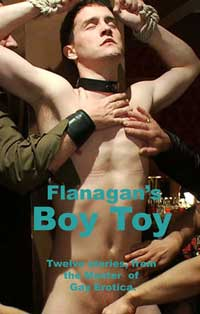 cover design for the book entitled Boy Toy