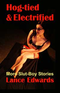 cover design for the book entitled Hog-tied & Electrified, More Slut-boy Stories