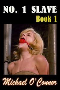 No 1 Slave (book One)