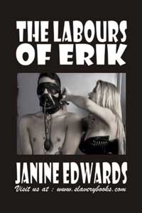 cover design for the book entitled The Labours Of Erik