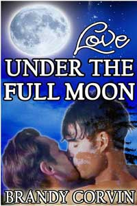 Love Under The Full Moon