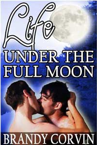 Life Under The Full Moon