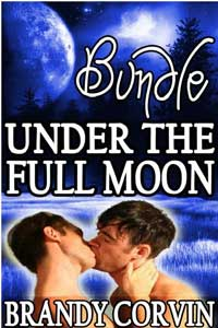 Under The Full Moon Series Bundle