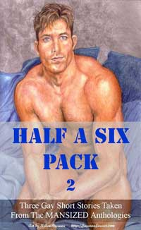 cover design for the book entitled Half A Six Pack 2