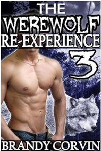 cover design for the book entitled The Werewolf Re-experience 3
