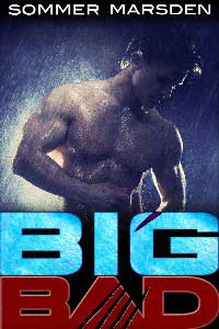 cover design for the book entitled Big Bad