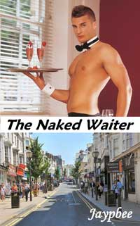 cover design for the book entitled The Naked Waiter
