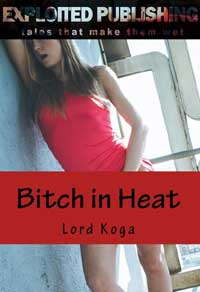 cover design for the book entitled Bitch in Heat