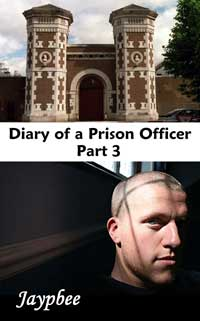 cover design for the book entitled Diary Of A Prison Officer - Part 3
