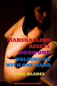 cover design for the book entitled Marshaling Assets Book 1