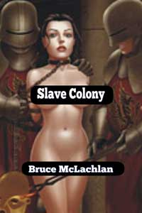 cover design for the book entitled Slave Colony