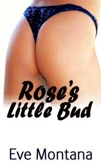 Rose`s Little Bud