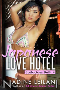 cover design for the book entitled Japanese Love Hotel