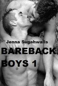 cover design for the book entitled BAREBACK BOYS 1
