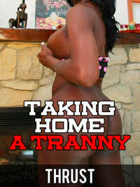 cover design for the book entitled Taking Home A Tranny