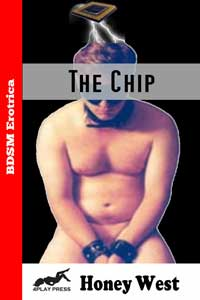 cover design for the book entitled THE CHIP