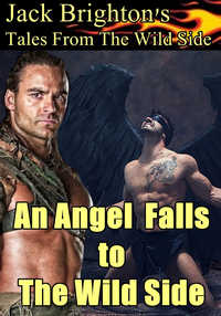 cover design for the book entitled An Angel Falls to The Wild Side