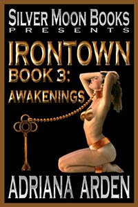 cover design for the book entitled Irontown 3